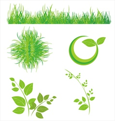 Floral icons of grass and leaves vector image