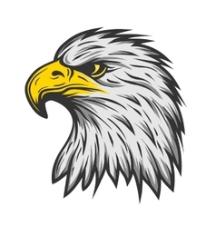 Proud eagle head color version vector