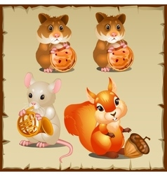Set of squirrel with hamsters and mouse vector