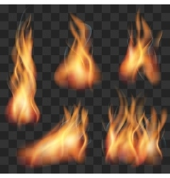 Realistic transparent fire flame set vector