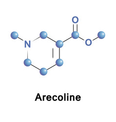 Arecoline nicotinic alkaloid vector