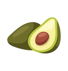 Avocado pieces set isolated on white background vector image