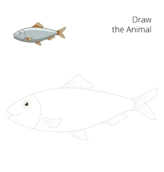 Draw the herring fish educational game vector image