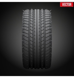 Winter tires with metal spikes on dark background vector