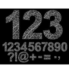 Ornamented numbers vector