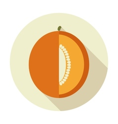 Melon flat icon with long shadow vector