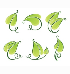 Decorative green leaves vector