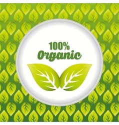 Organic and natural product label vector