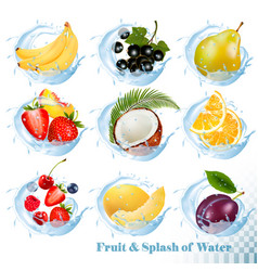 Big collection of fruit in a water splash icons vector