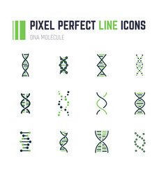 Dna molecule icon set vector