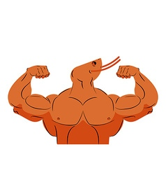Strong athlete shrimp Fitness marine animal vector image vector image