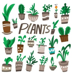 plants in a pots vector image