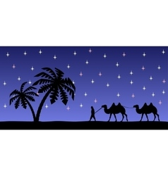 Man with camels in the night sky vector