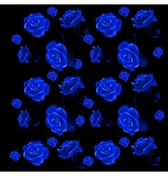Blue rose buds on a black background vector