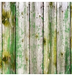 Painted Wooden Planks vector image