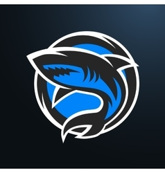 Shark sport logo on a dark background vector