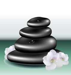 Spa stone set with white flower vector image
