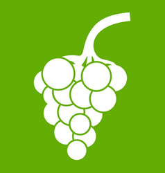 grape branch icon green vector image