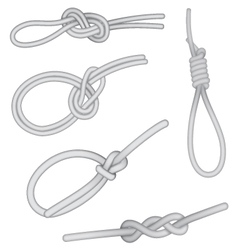 Set of knots vector image vector image