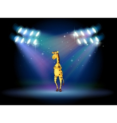 A giraffe standing in the middle of the stage vector image