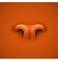 Animals nose vector