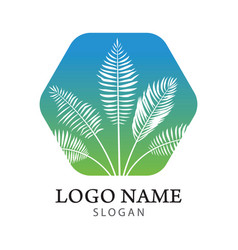 palm tree logo vector image vector image