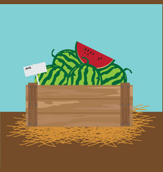 Watermelon in a wooden crate vector