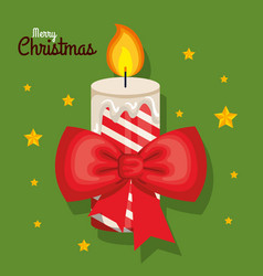 christmas candles with fir branches and holly vector image