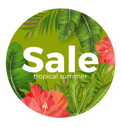 Tropical summer sale promotional poster with vector