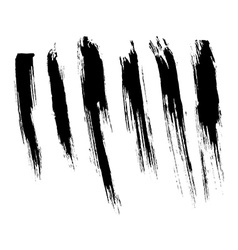 Brush strokes vector image