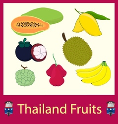 Thailand fruits vector