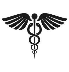 Caduceus Health Symbol vector image