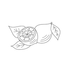 Lemon icon sketch vector