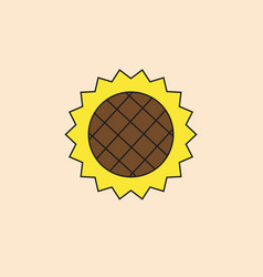sunflower icon autumn harvest concept vector image
