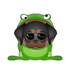 frog dog vector image