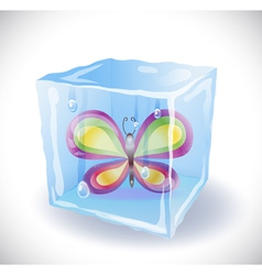 Ice cube with butterfly vector image