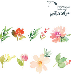 Watercolor cet vector image vector image