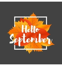 Autumn new season hello september lettering with vector