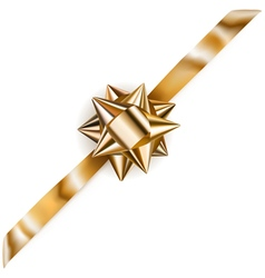 Beautiful golden shiny bow vector image