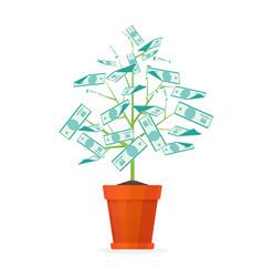 Tree money in a pot vector