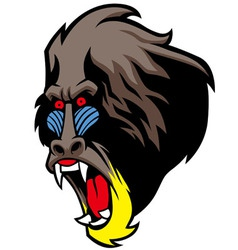 angry baboon head vector image
