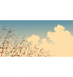 reed sky vector image
