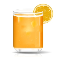 orange juice in glass vector image