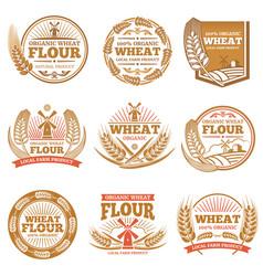 Organic wheat flour farming grain products vector
