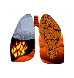 tuberculosis vector image