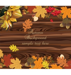 Autumn leaves on wood background vector