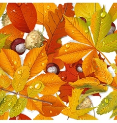 Seamless pattern from autumn leaves and chestnut vector image