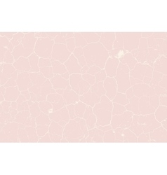 Cracked pink texture vector