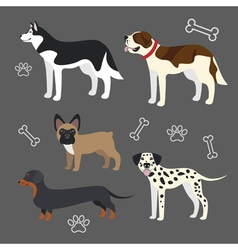 Set of funny dogs vector image