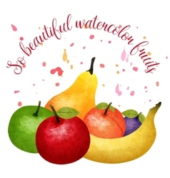 Fruit watercolor composition vector